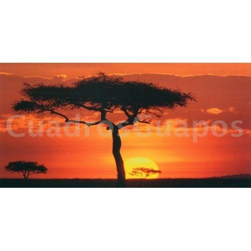 atardecer africano kenia