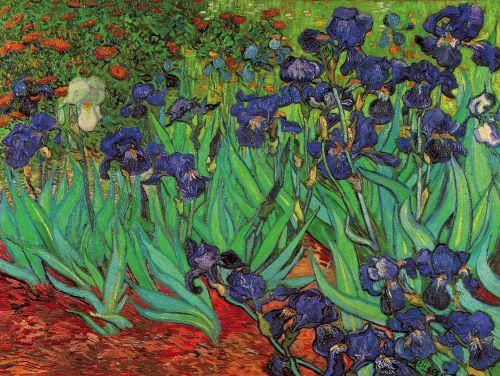 Lamina De Van Gogh Los Lirios