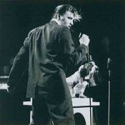 Elvis Presley, On stage with a dog