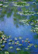 Monet, Ninfeas, Vertical