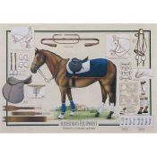 Equestrian, Horse and Equipment