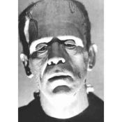 Frankenstein, Retrato