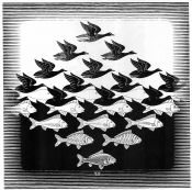 Escher, Fish and Birds