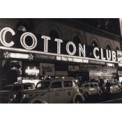 Cotton Club, Pub New York