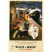 Colection Ricordi: Whisky Black and White 1